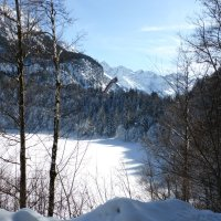 Winter Freibergsee (3)