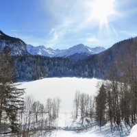 Winter Freibergsee (6)