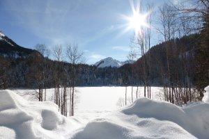 Winter Freibergsee (7)