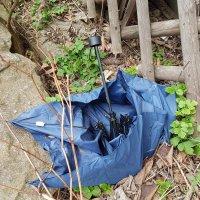 Müllsammelaktion (11)