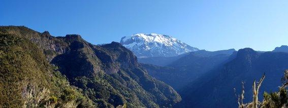 Blicka auf den Kilimanjaro