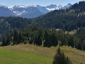 Im Lochbachtal