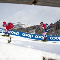 Tour de Ski Herren