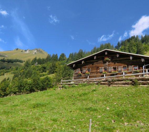 Traufbachalpe