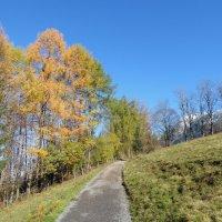 Hofmannsruh im Herbst