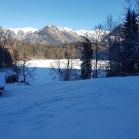 Winter am Freibergsee (4)