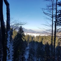 Ausblick Oberstdorf