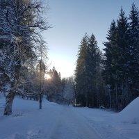 Winterwandern (1)