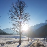 Winterwandern (2)