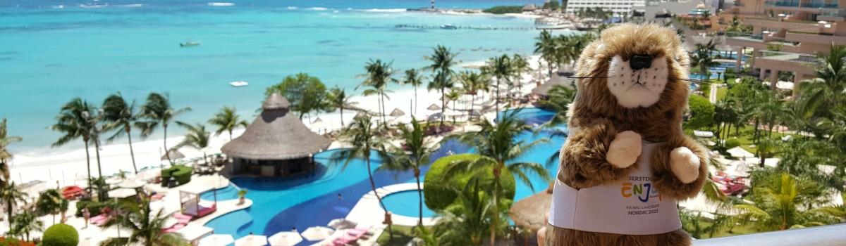 Max das Murmeltier ist in Cancun gelandet.