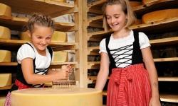 Kinder in der Käserei