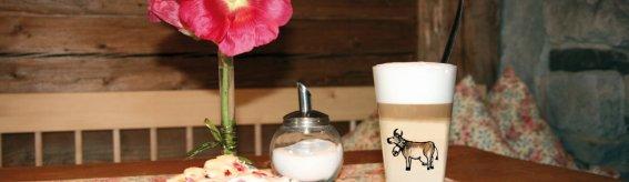 2008 Kaffeekuchen 4867 4c LogoKaeladen