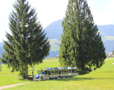 Alpenpanorama-Fahrt