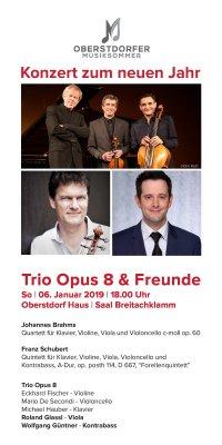 Flyer Trio Opus 8 und Freunde 2019
