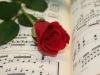 Musik-der-romantik