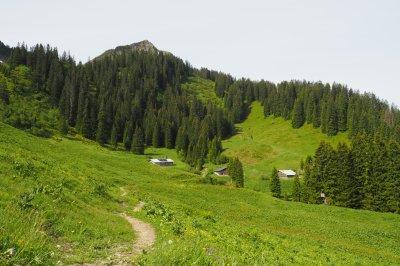 Untere Walmendinger Alpe