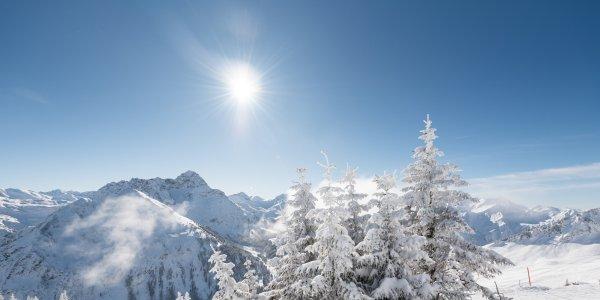 Schneereicher Wintertraum