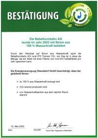 Nebelhorn - Zertifikat Ökostrom