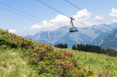 Fellhornbahn über den Alpenrosen