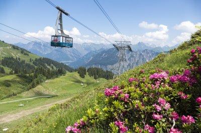 Vorbei an Alpenrosen-Hängen