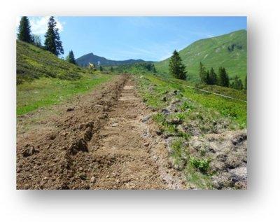 Umweltschonendes Bauen - Erde und Graswasen
