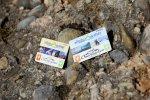 Allgäu-Walser-Cards mit Oberstaufen PLUS