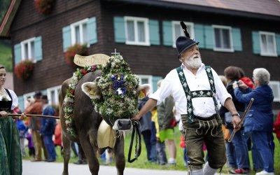 Traditioneller Alpabtrieb im September