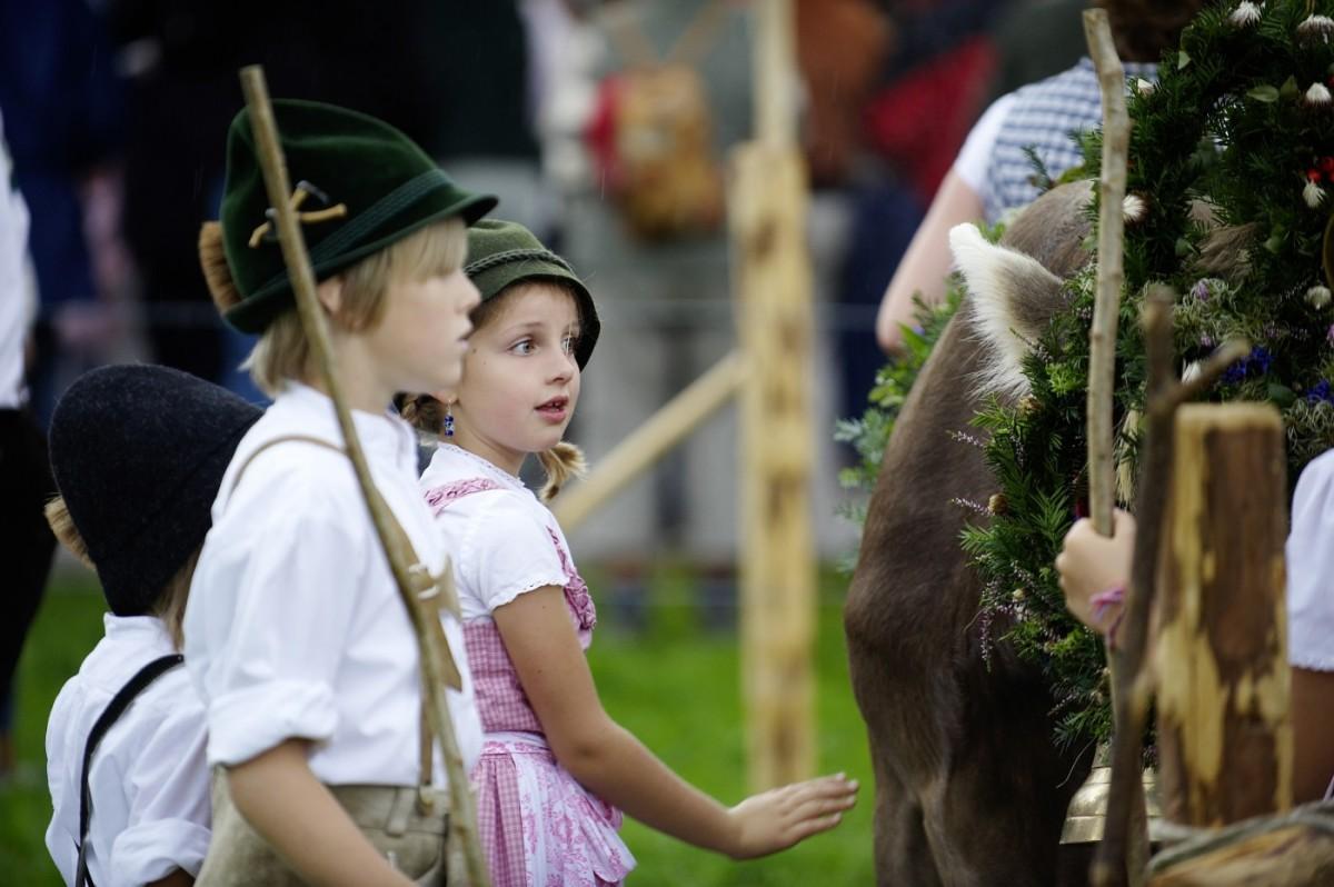 Kinder beim Viehscheid