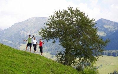 Nordic Walking-Ausflug