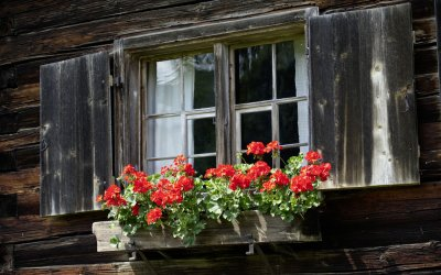 Fenster am Huiamtle