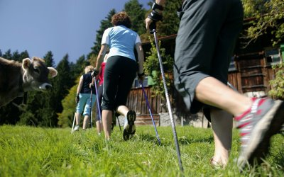Nordic Walking in den Alpen