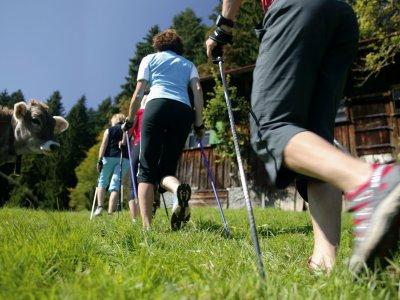 Nordic Walking in den Alpen