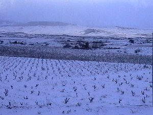 Winterliche Region Rioja in Spanien