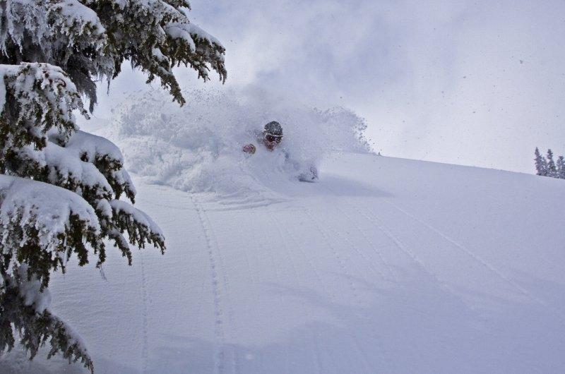 Deep Powder Todd Lawson