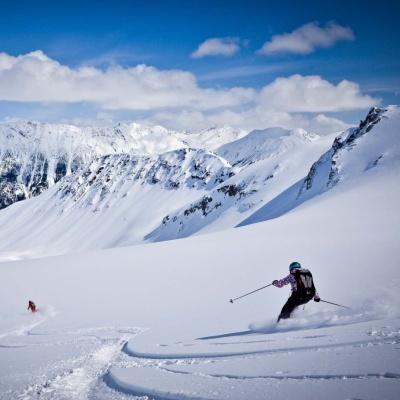 Skiing TLH