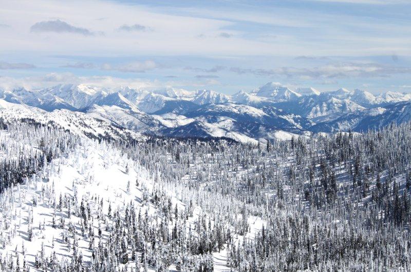 Whitefish Glacier View