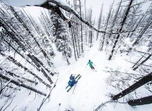 Tree Skiing Whistler