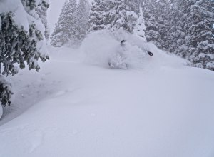 Alta Ski 2