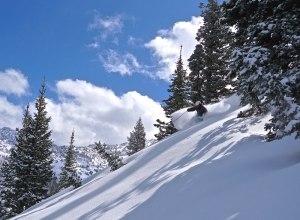 Alta Ski 3