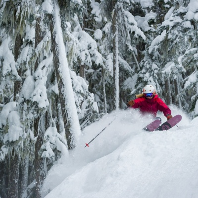 Whistler Powder Skiing