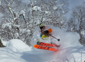 Niseko Powder