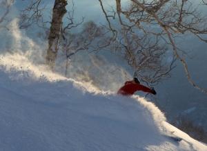 Skifahrer Niseko