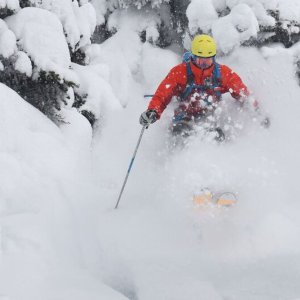 Tree-Skier,-Great-Snow,-Danny-Stoffel