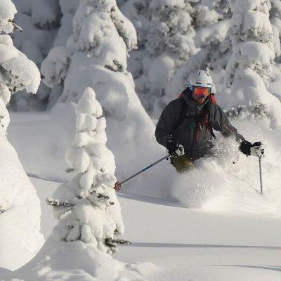 Male Skier, Trees, Danny Stoffel