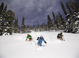 Waldabfahrt Tiefschnee Jackson Hole