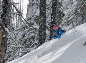 Female Skier, Trees, Craig McGee