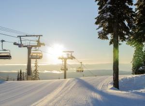 Sunburst Chair in Sun Peaks