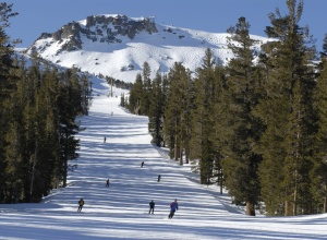 Mammoth Mountain Winter
