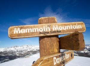 Mammoth Wegweiser
