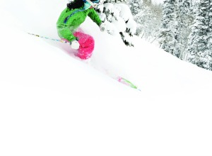 Powder Tree Skiing